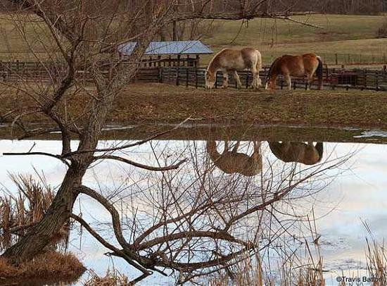 Reflection Photography38 50 Fantastic Reflective Photography Examples
