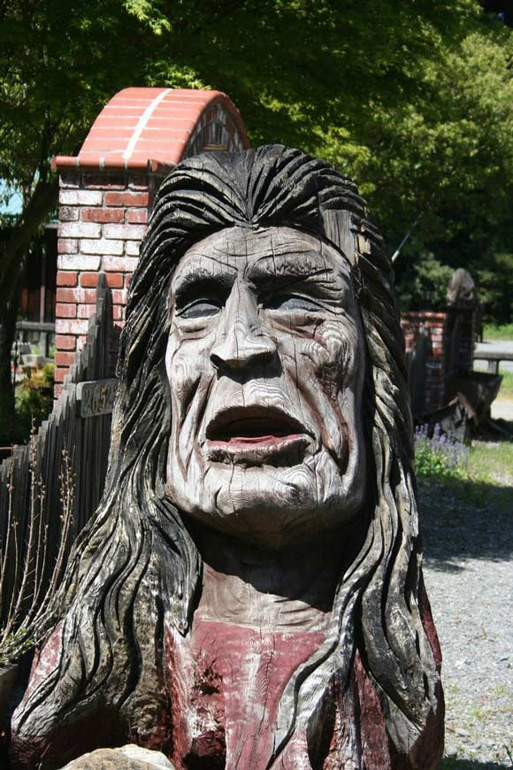 red indian face carved tree house