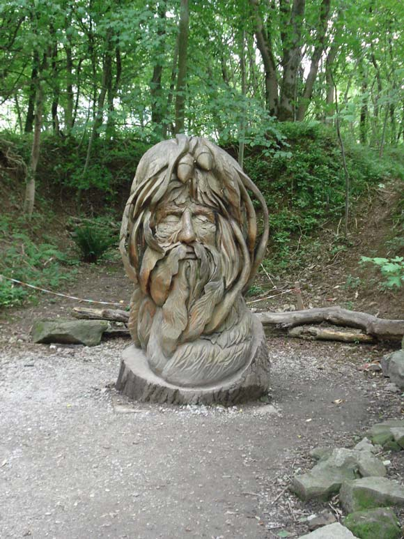 old man face tree carved