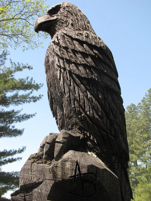 eagle carved trees
