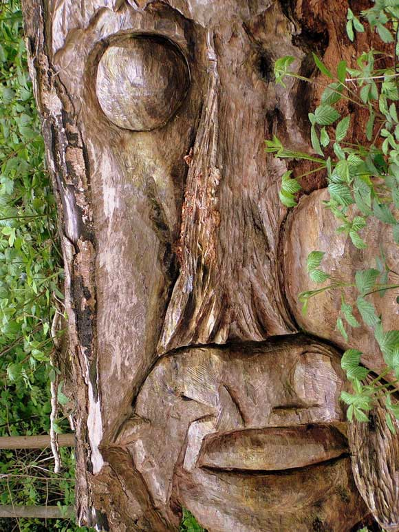 abstract tree carvings