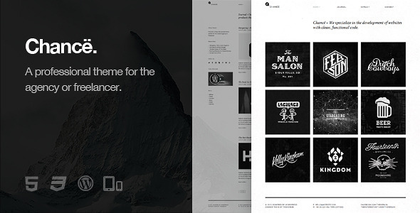 WordPress Themes 30