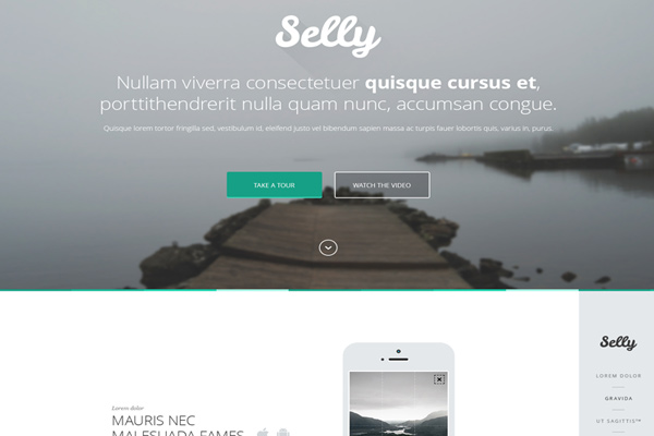 freebie psd mockup selly landing page download