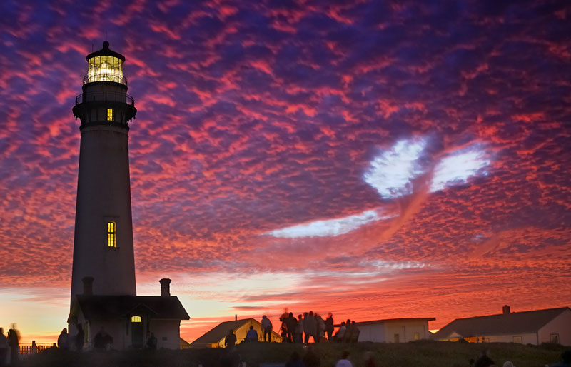 sky whale pigeon point