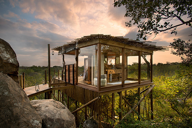lion sands game reserve treehouse 12 Creative and Innovative Tree House Designs