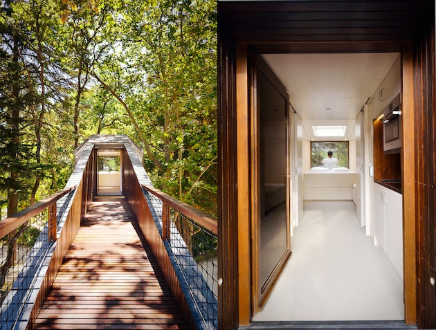 portuguese elevated tree snake housev 12 Creative and Innovative Tree House Designs