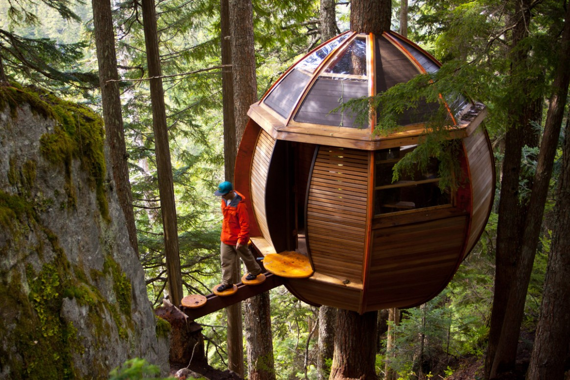 12 Creative and Innovative Tree House Designs