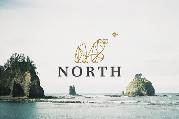 North by Donica Ida