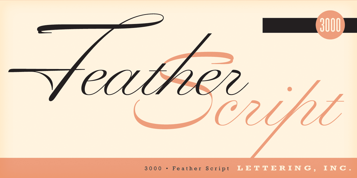 Feather Script by Lettering Inc