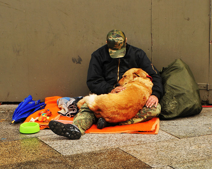 Homeless Man Taking Care Of His Sleeping Dog