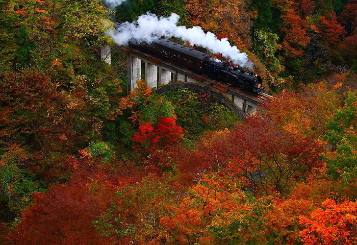 Autumn Color In Fukushima