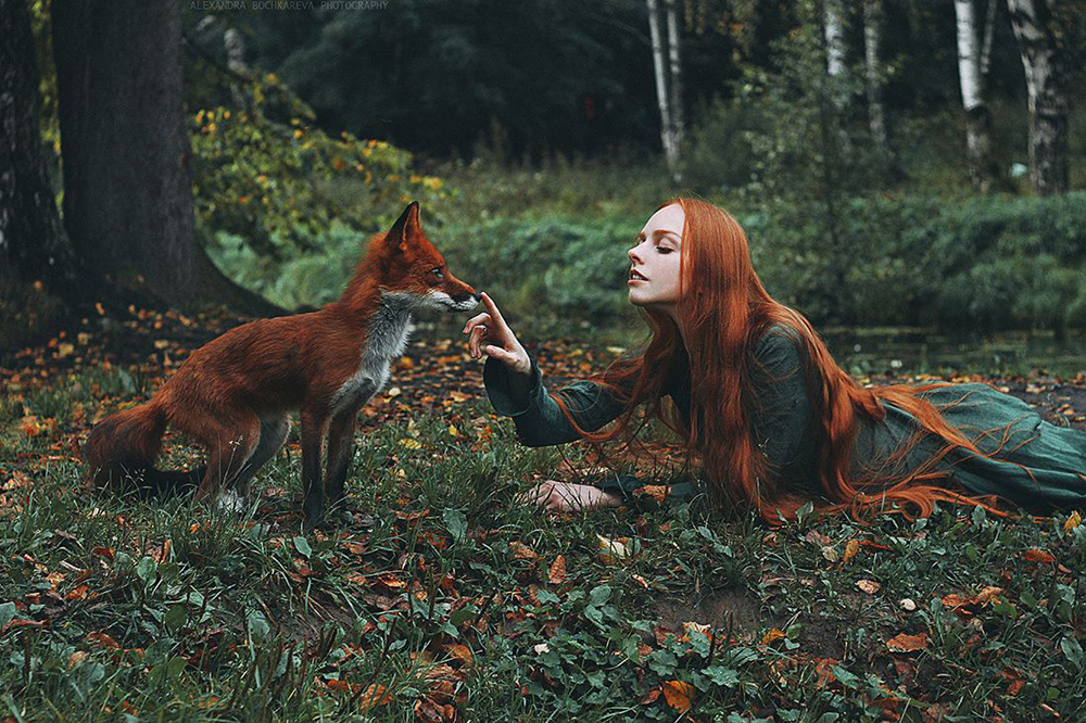 girl and fox photo